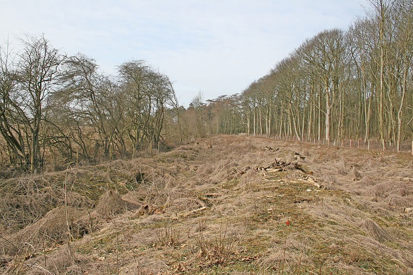 King Luds entrenchments